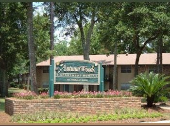 EasyRoommate US - APARTMENT AVAILABLE FOR SUBLET CLOSE TO UNIVERSITY OF SOUTH AL!! - Mobile, Mobile - $529