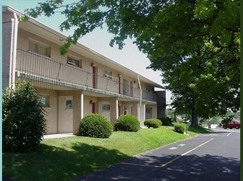EasyRoommate US - One Bedroom / Studio Apts. - Frankfort, Other-Kentucky - $400