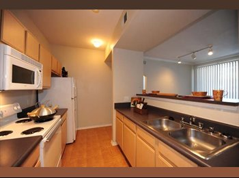 EasyRoommate US - 1BR/1BA available in awesome neighborhood! - Other-Texas, Other-Texas - $700