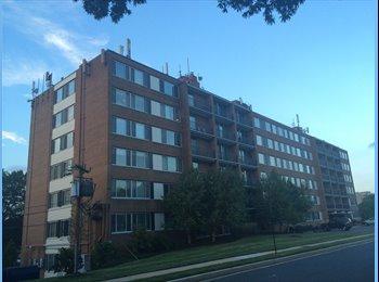 EasyRoommate US - Subletting a room in Pentagon City  - Arlington, Arlington - $1152