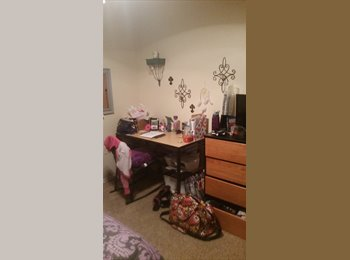 EasyRoommate US - $419 a month 1 bed and bath fully furnished - San Marcos, San Marcos - $419