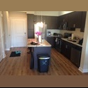 EasyRoommate US Room available - South Tampa, Tampa - $ 750 per Month(s) - Image 1