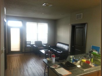 EasyRoommate US - 4050 Lofts Female MONTH OF DEC. PAID - North Tampa, Tampa - $614