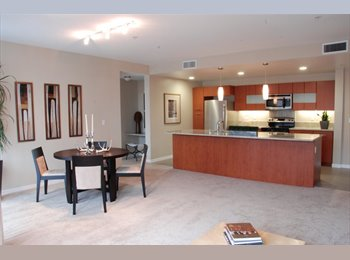 EasyRoommate US - NEW and BEAUTIFUL Remodeled Apt with HUGE OPEN SPA - Santa Clara, San Jose Area - $1350