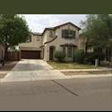 EasyRoommate US Gilbert roommate needed December 1! - Gilbert, Phoenix - $ 500 per Month(s) - Image 1