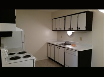 EasyRoommate US - Bedroom for rent - West Wayne / Canton Area, Detroit Area - $550