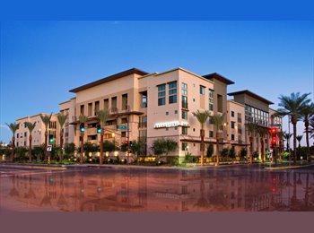EasyRoommate US - Room for rent in Biltmore area! - Central Phoenix, Phoenix - $800