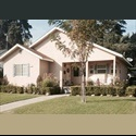 EasyRoommate US Room for Rent by Charming Old Fig Garden! - Old Fig Garden, Fresno - $ 475 per Month(s) - Image 1