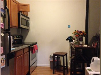 EasyRoommate US - Summer Sublet 1br/1ba at 20 Hawley Street - Binghamton, Other-New York - $1075