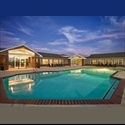 EasyRoommate US Sublet needed - San Marcos - $ 399 per Month(s) - Image 1