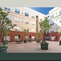 EasyRoommate US $750 Best Student Living in West Bank Campus - University, Minneapolis, Minneapolis / St Paul - $ 750 per Month(s) - Image 1