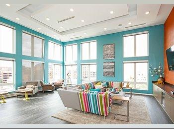 EasyRoommate US - Apartment available Free NOVEMBER RENT! - University, Minneapolis / St Paul - $625