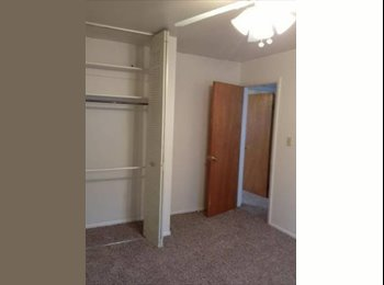 EasyRoommate US - Guy and cat seek 420 friendly roomie - Colorado Springs, Colorado Springs - $350