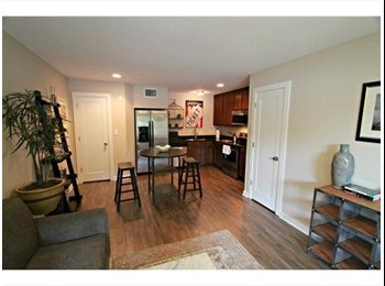 EasyRoommate US - Bitchin' $900 hyde park townhome - Hyde Park, Austin - $900