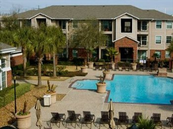 EasyRoommate US - Roommate needed until May! - Medical Center, Houston - $660