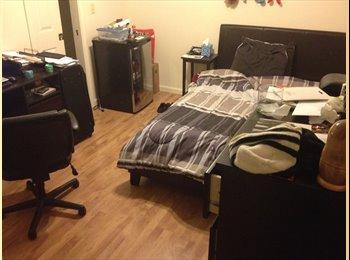 EasyRoommate US - Furnished Apartment Great Location - Bloomington, Bloomington - $575