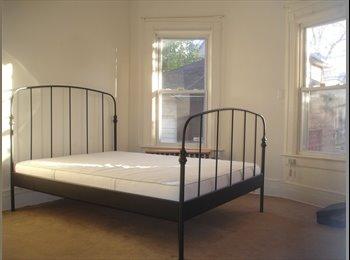EasyRoommate US - Seeking dog-friendly roommate - Kensington, New York City - $1137