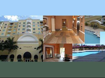 EasyRoommate US - Room for rent at the Douglas Grand - Coral Gables, Miami - $850