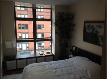 EasyRoommate US - offering one bedroom in Downtown crossing for Dece - Downtown, Boston - $1000