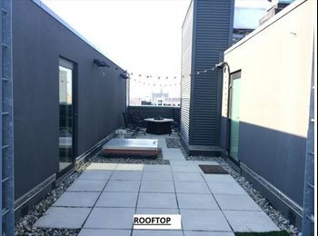 EasyRoommate US - Room for rent in a 2Br/2Ba apt + private rooftop - Other Philadelphia, Philadelphia - $1100