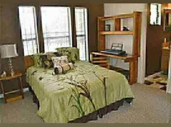 EasyRoommate US - Fully Furnished 1 bed & private bath in a 2/2 apartment - Tallahassee, Tallahassee - $505