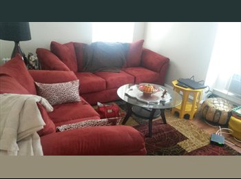 EasyRoommate US - 1 bedroom apartment for sablet - Lowell, Lowell - $600