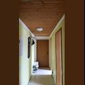 EasyWG AT 1 Room in living community / WG - Zimmer near SBG - Salzburg, Salzburg - € 250 pro Monat  - Foto 1