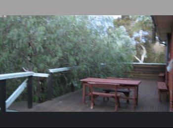 EasyRoommate AU - Sunny location loftus sutherland - Loftus, Sydney - $650