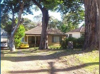 EasyRoommate AU - Large room, FF, Kirrawee, great location & house - Kirrawee, Sydney - $1148