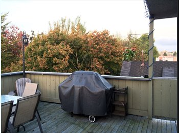 EasyRoommate CA - PENTHOUSE W/ LARGE PATIO IN KITS - Kitsilano, Vancouver - $1100