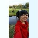 EasyWG DE - Me in Netherlands - Berlin - Foto 1 -  - € 350 pro Monat  - Foto 1