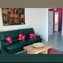 Appartager FR Bel appartement  **** - Montpellier-centre, Montpellier, Montpellier - € 400 par Mois - Image 1