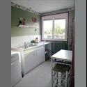 Appartager FR location appartement pour colocataire - Auxerre, Auxerre - € 350 par Mois - Image 1