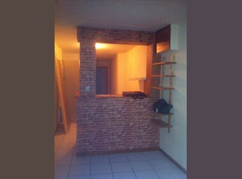 Appartager FR - ANCIENNE MAISON DE VILLE RENOVEE 3 APPART 2 CH - Niort, Niort - €300