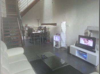 Appartager FR - propose chambre pour personne sympa - Annemasse, Annemasse - €650