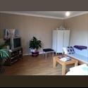 Appartager FR Recherche colocataire quartier hipodrome - Nantes-Nord, Nantes, Nantes - € 355 par Mois - Image 1