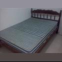 CompartoDepa MX renta departamento - Campeche - MX$ 1500 por Mes - Foto 1