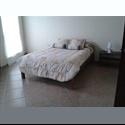 CompartoDepa MX Se Renta Habitacion en San Miguel de Allende, Guanajuato - Guanajuato - MX$ 2500 por Mes - Foto 1