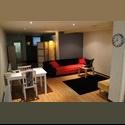 EasyKamer NL Studio in Rotterdam Noord - Bergpolder, Noord, Rotterdam - € 750 per Maand - Image 1