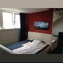 EasyKamer NL Fully furnised and spacious room CS Rotterdam - C.S. kwartier, Centrum, Rotterdam - € 450 per Maand - Image 1