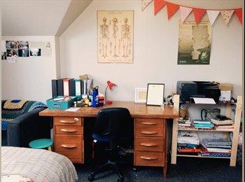 NZ - Room Available! 35 Clyde Stret - Dunedin North, Dunedin - $589