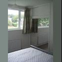 EasyRoommate UK Large Double in friendly house nr. Maylands, Hemel - Hemel Hempstead, Hemel Hempstead - £ 400 per Month - Image 1