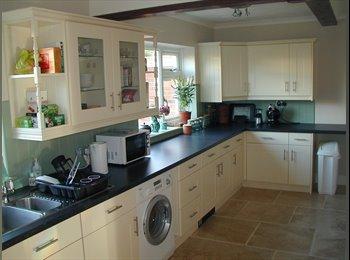EasyRoommate UK - Beautiful rooms in beautiful houses - Whitley Wood, Reading - £390