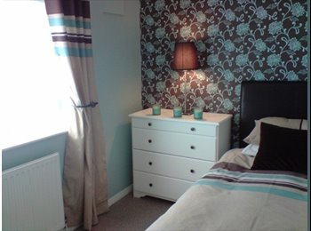 EasyRoommate UK single and double rooms to let in shared house.  - Deeside - £368 per Month,£85 per Week - Image 1
