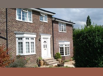 EasyRoommate UK - 2Lovely Large Doubles in Quiet House avail Nov 1st - Abbotts Barton, Winchester - £450