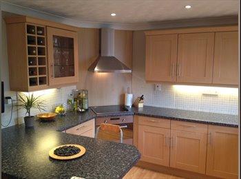 EasyRoommate UK - House Mate Wanted for Modern Spacious House - Aylesbury, Aylesbury - £420