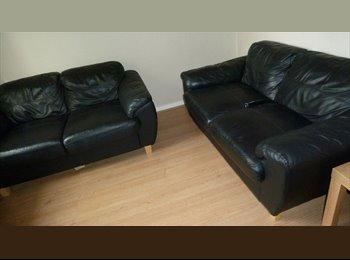 EasyRoommate UK - Looking for a room in Hatfield? - Hatfield, Hatfield - £470