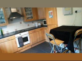 EasyRoommate UK - Room to rent in house Bishop's Stortford, near station - Bishop's Stortford, Bishop's Stortford - £335