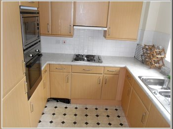 EasyRoommate UK - 2 bed apartments to rent! - Selly Park, Birmingham - £325