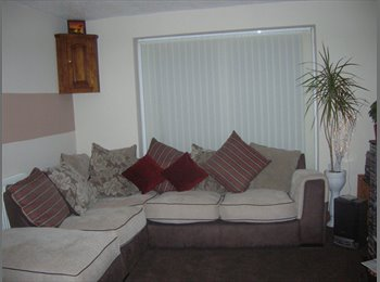 EasyRoommate UK - Fully furnished rooms to rent - Chester, Chester - £350